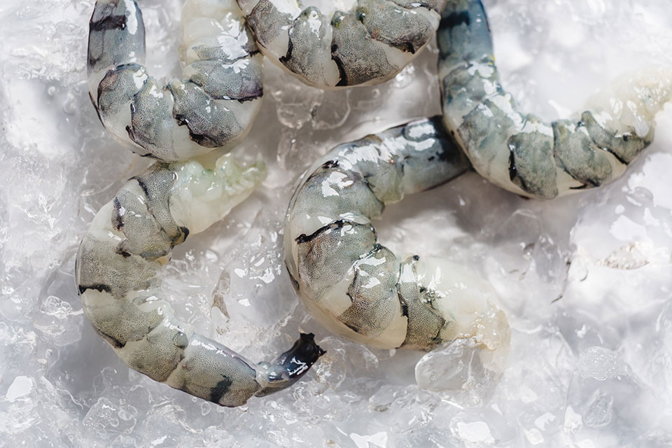 black-tiger-prawn-meat-chilled