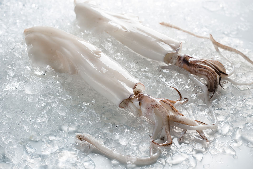 squid peeled